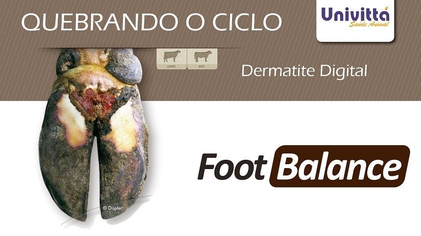 Dermatite Digital em Bovinos