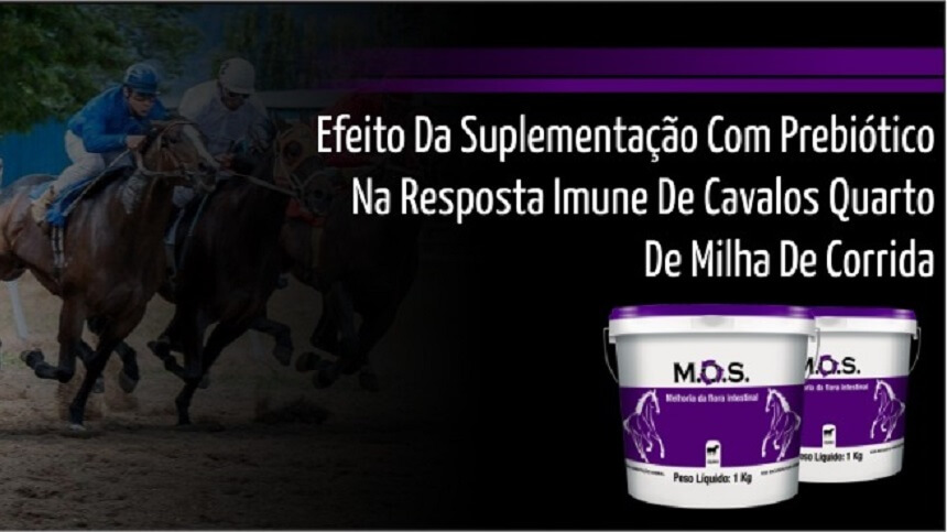 Efeito da suplementação com prebiótico MOS na resposta imune de cavalos quarto de milha de corrida