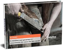 Saiba as 6 medidas que garantem o crescimento do casco de seu cavalo